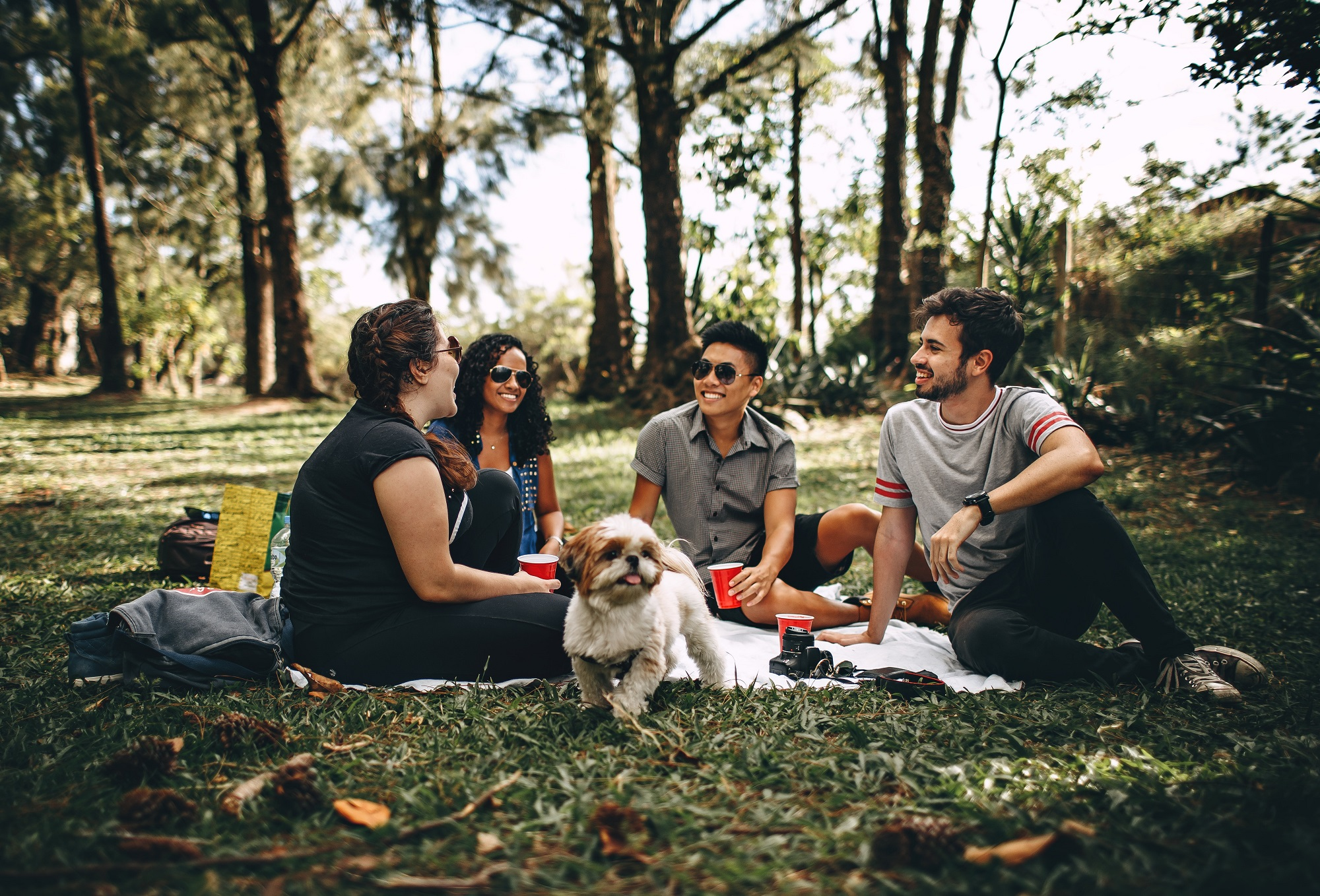 College students hanging out in a park