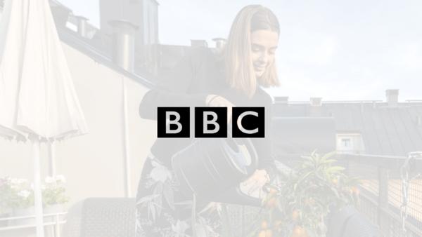 article bbc